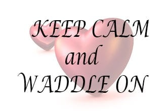 Keep calm and waddle on - 27-28 weeks pregnant