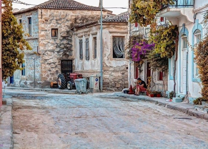 Spotted-by-Chris-Alacati